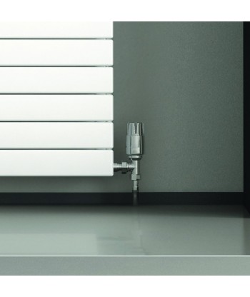 Slieve Horizontal Double Radiator