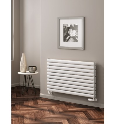 Nevah Horizontal Double Radiator