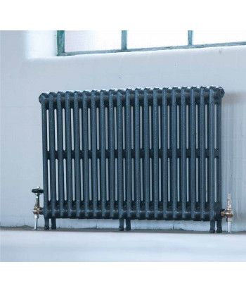The Victorian Two Column Cast Iron Radiator