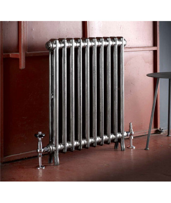 The Edwardian Two Column Cast Iron Radiator