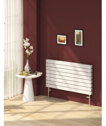 Rione Horizontal Double Radiator