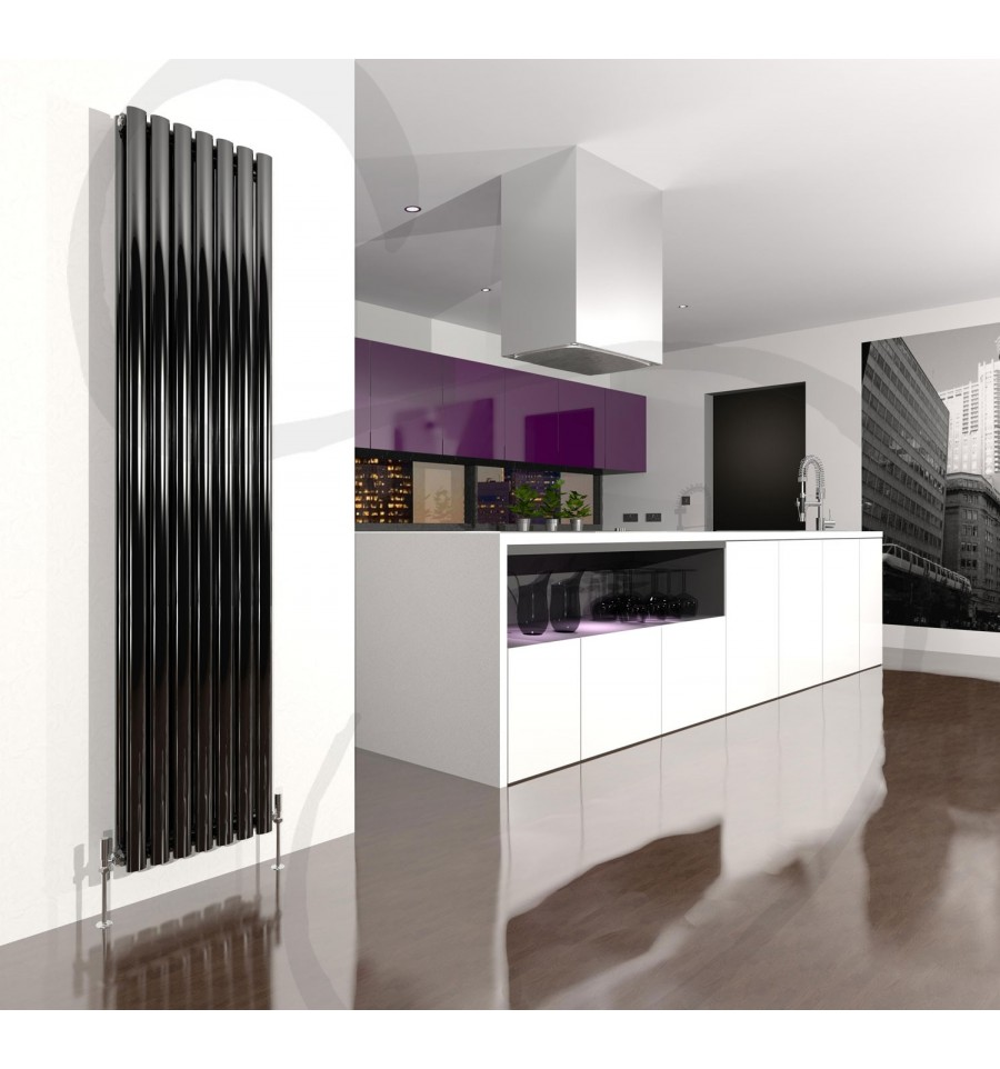 Beau Danza Vertical Double Radiator