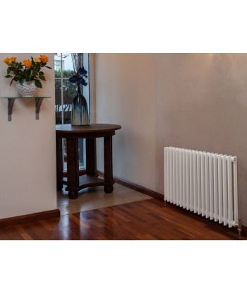 Adagio 35 Horizontal Double Radiator